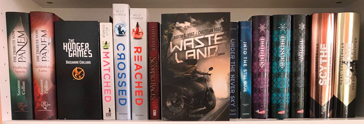 """""""Wasteland"""" von Judith und Christian Vogt, vor einem Bücherregal."""