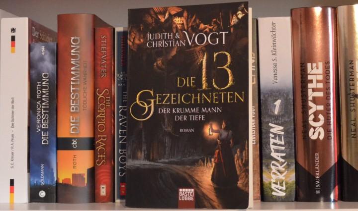 """Buch """"Die 13 Gezeichneten, Band 3: Der Krumme Mann der Tiefe"""" von Judith und Christian Vogt, vor einem Bücherregalbrett"""